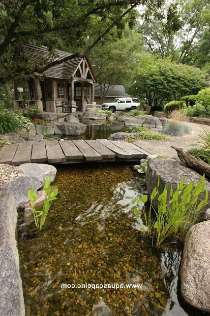 Pond Paradise In The Backyard Garden Stream Ponds