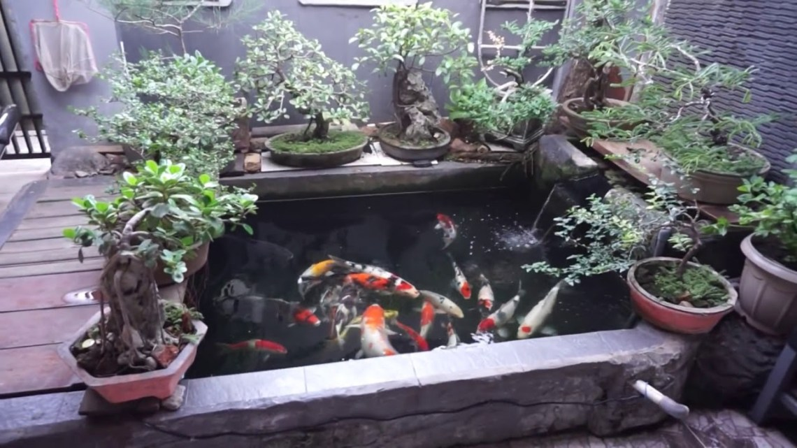 Simple Diy Koi Ponds Ideas 2018 Youtube