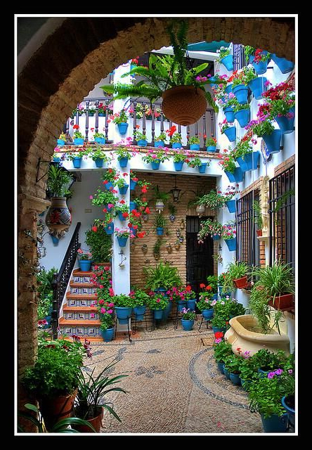 Spain In Uk On In 2020 Mexican Courtyard Mexican Garden