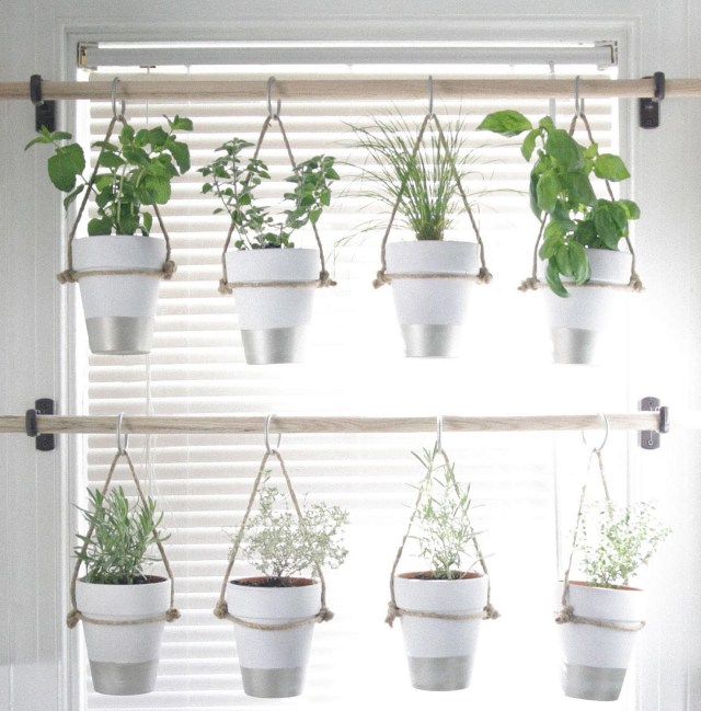 The Best Indoor Herb Garden Ideas For Your Home And