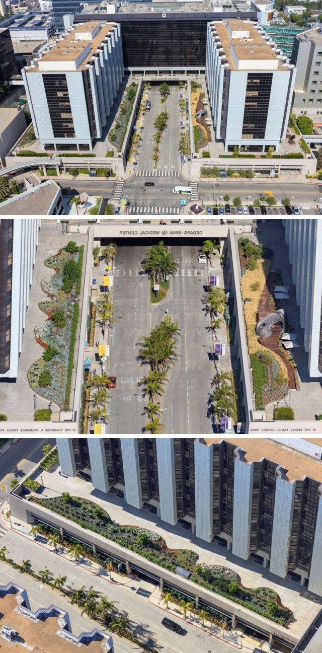 This Healing Garden Was Added To A Medical Center In Los