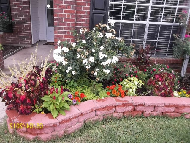 This Is Actually One Of The Flower Beds In The Front Yard