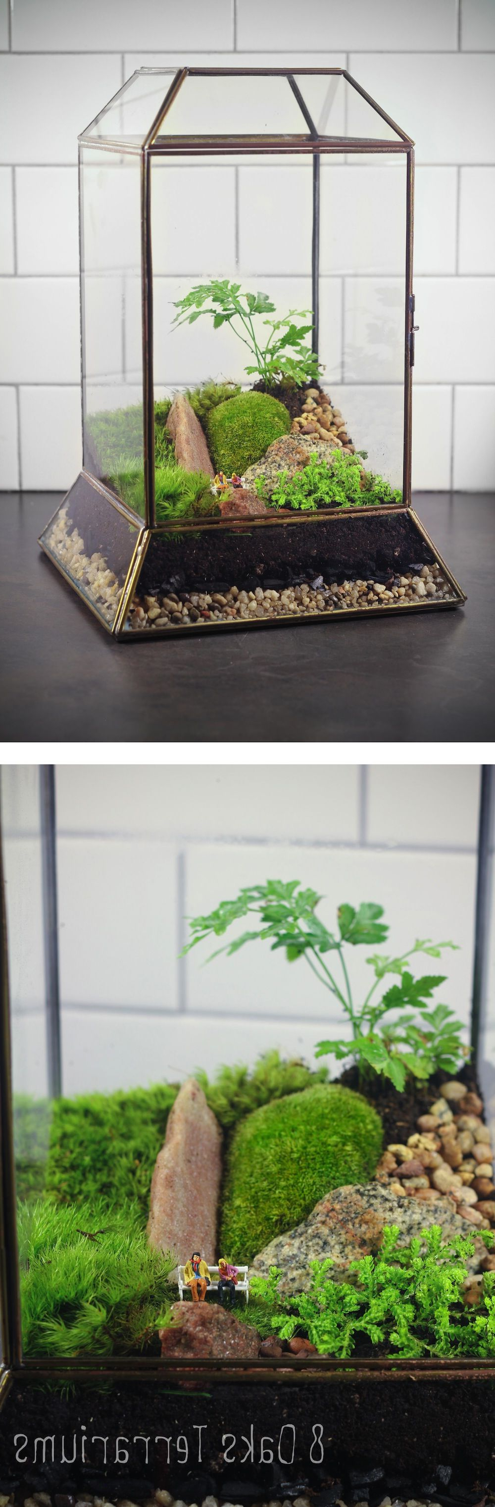 Vintage Leaded Glass Terrarium With A Variety Of Mosses