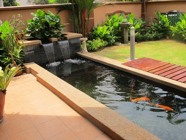 Wonderful Modern Patio Ideas With Small Koi Fish Pond And