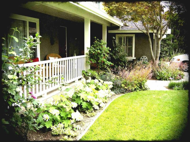 Yard Budget Backyard Landscaping Ideas On A Simple And Low Low Budget Small Back Patio Gardens