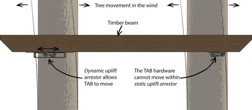 Tree Movement - Treehouse Beam