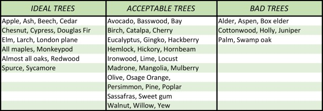 TREE---Tree-Selection-Table