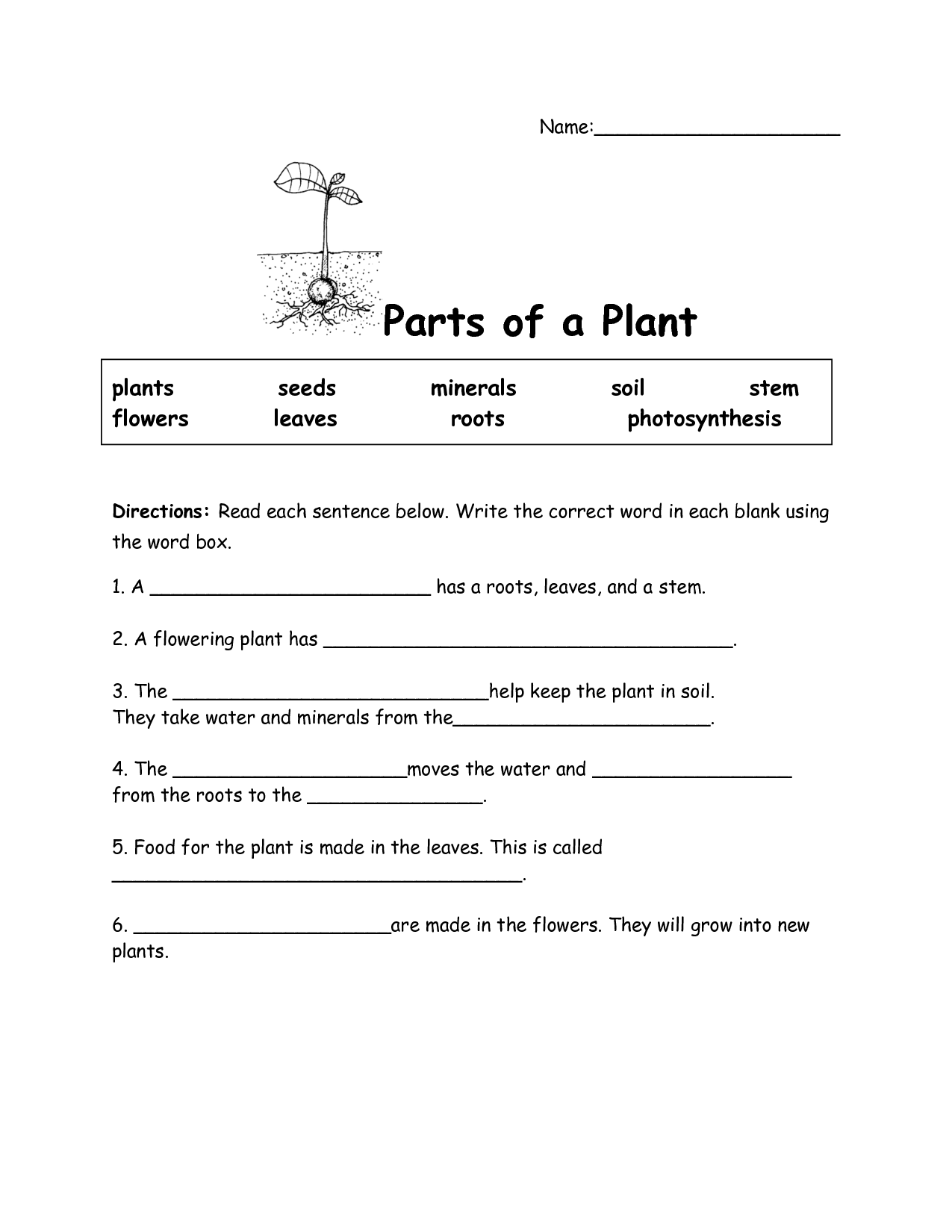 Worksheet Parts Of Plants Worksheet Worksheet Fun