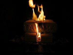 tacoma-firelog-firestarter-action