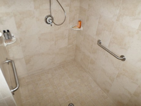 The Shower Grab Bars are Ready for Grabbing