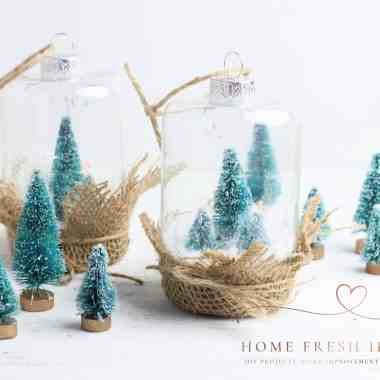 2 Christmas snow globes with mini trees around
