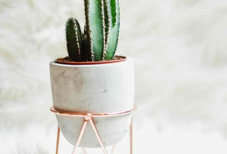 The Hottest Rose Gold Home Decor Of The Season - These are The Hottest Rose Gold Home Decor Of The Season! Check them out and get your home and office decorated in style. #rosegold #stylish #beautiful #glam #gold #rose #decor #decorations #simple #homefreshideas