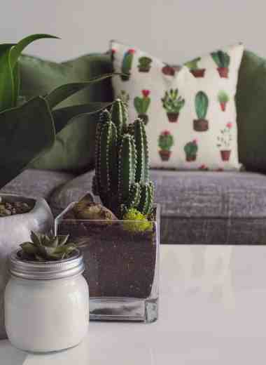 The Best Fake House Plants For People With Black Thumbs - Look no further, these are the Best Fake House Plants For People With Black Thumbs. You don't have to water them, put them in sunlight or anything! #plants #faux #fake #beautiful #artificialplants #easy #homefreshideas