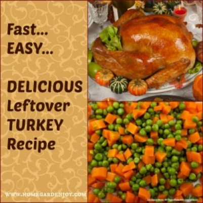 leftover turkey recipe