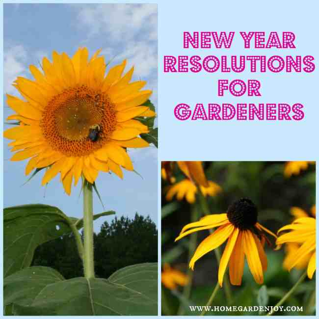 New Year Resolutions for gardeners