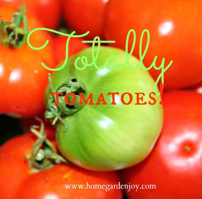 Totally tomatoes