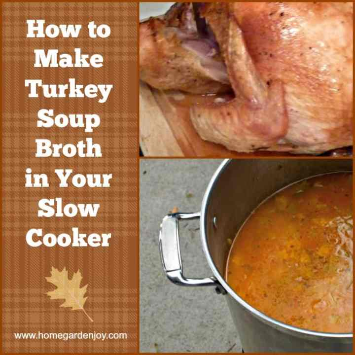 turkey broth graphic