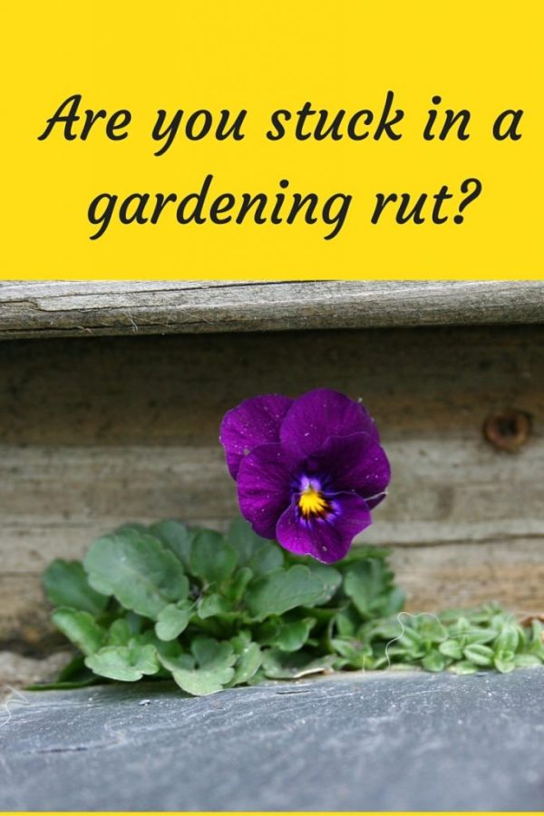 Are you stuck in a gardening rut-