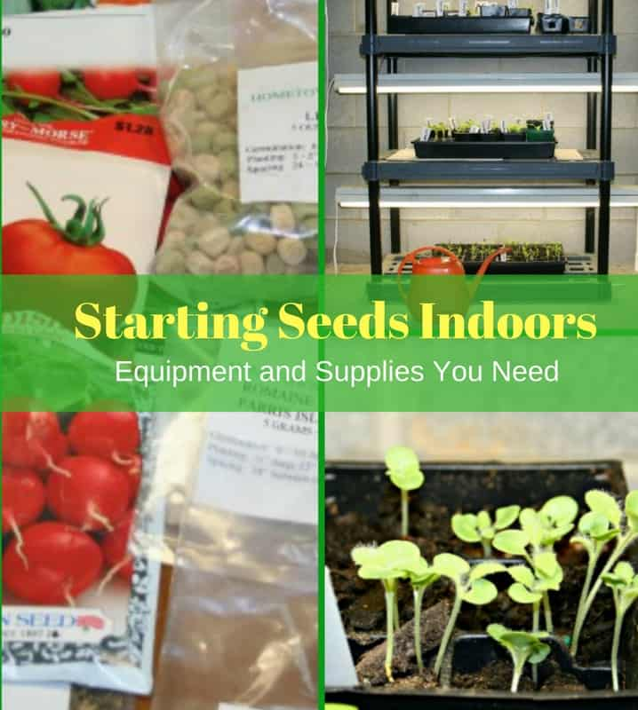 Starting Seeds Indoors Equipment And Supplies Home Garden Joy