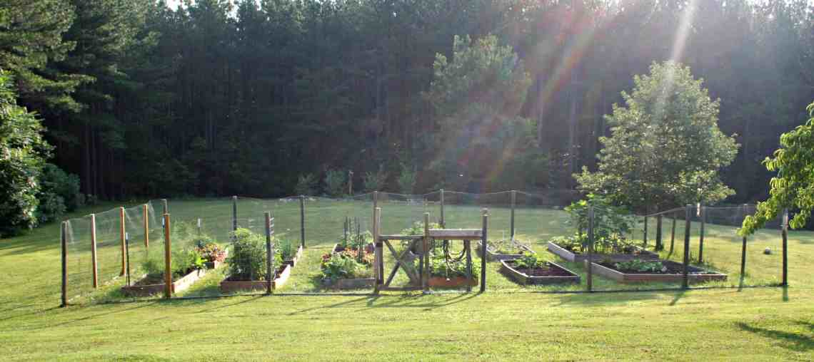 Home Garden Joy raised bed gardens