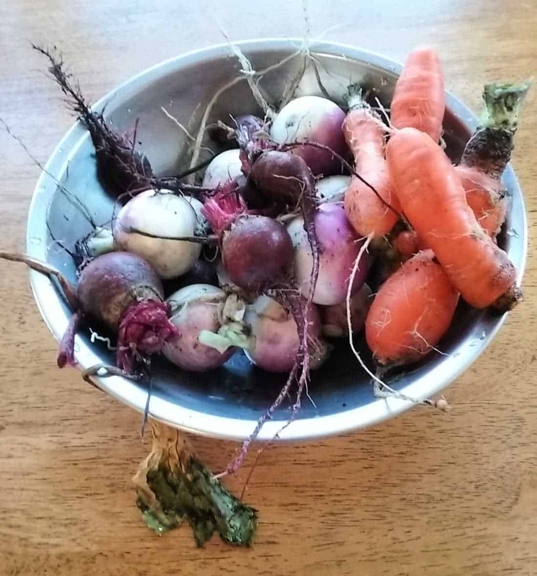 a picture of winter vegetables from the garden