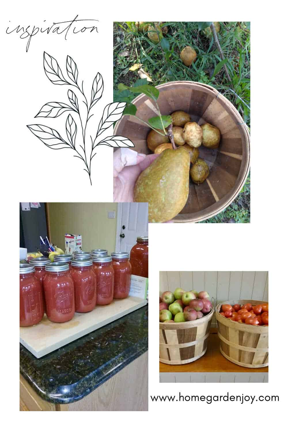 home canning inspiration board