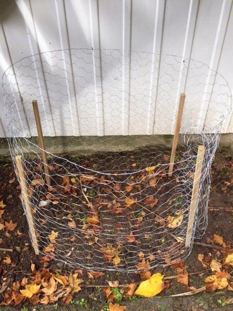 DIY Leaf Mould Cage