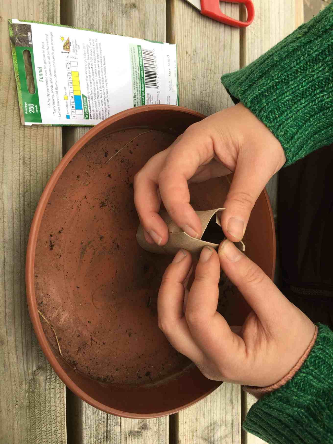 biodegradable seed planters mean delicate roots do not have to be disturbed