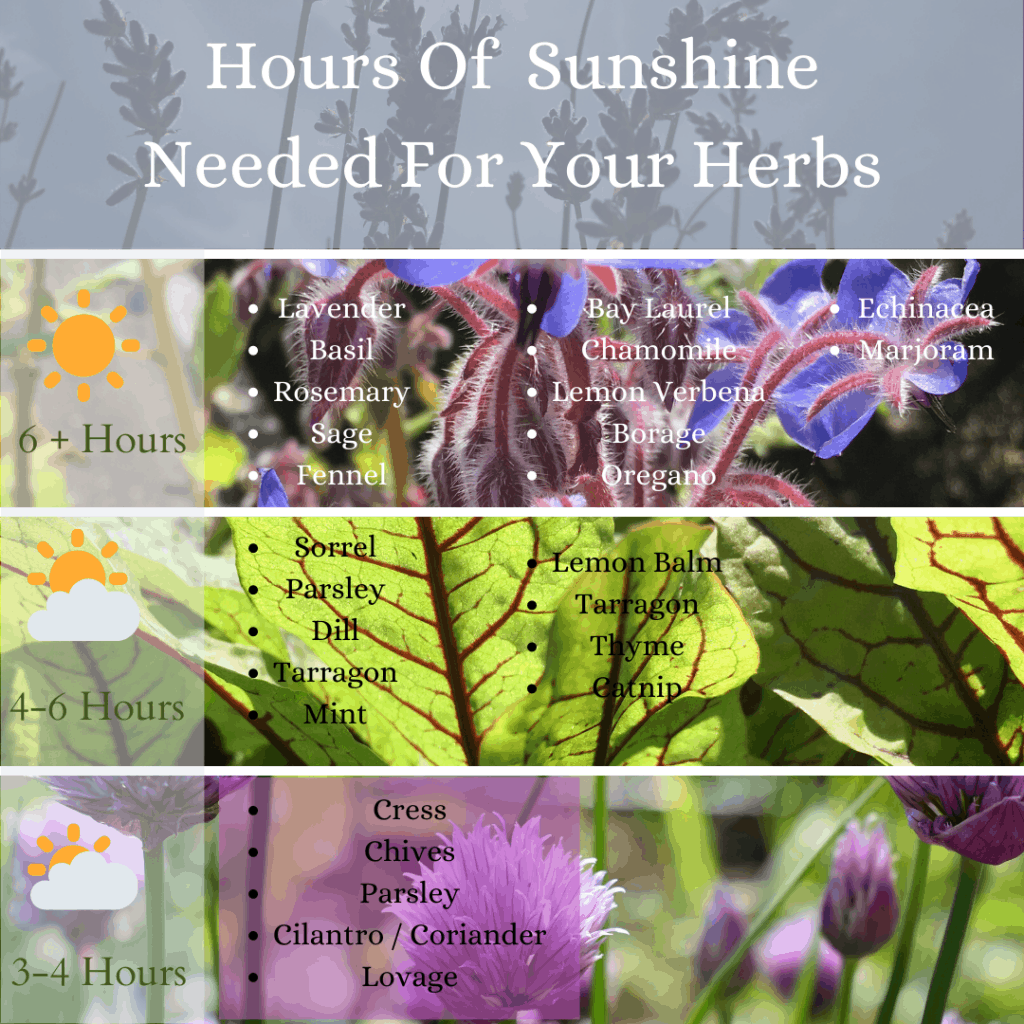Sunshine hours terms