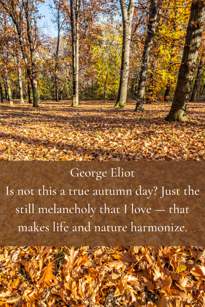 George Eliot Is not this a true autumn day? Just the still melancholy that I love — that makes life and nature harmonize.