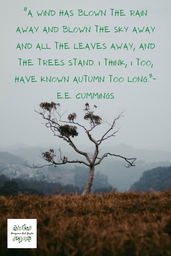 """""""A wind has blown the rain away and blown the sky away and all the leaves away, and the trees stand. I think, I too, have known autumn too long."""" – E.E. Cummings"""