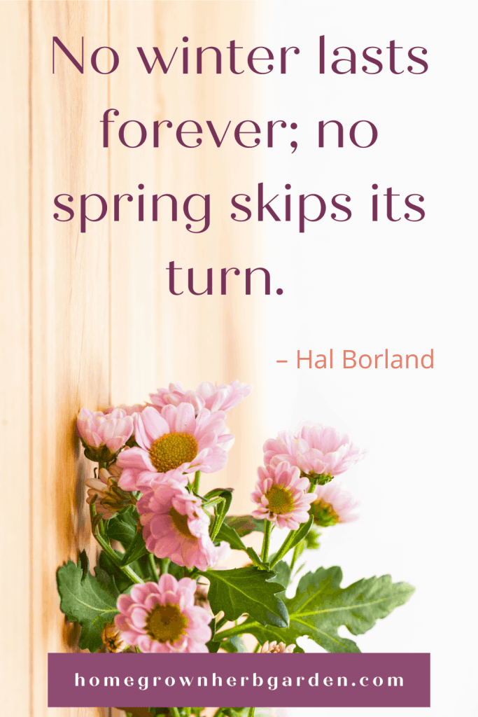 No winter lasts forever; no spring skips its turn. – Hal Borland