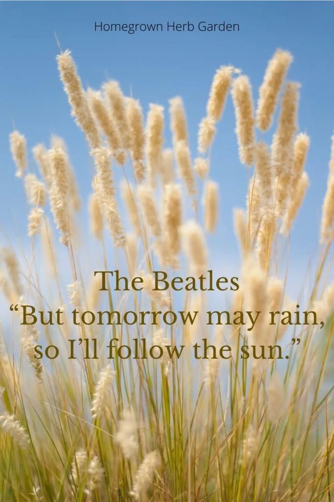 "The Beatles ""But tomorrow may rain, so I'll follow the sun."""