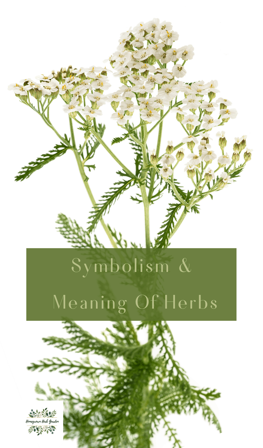 symbolism of herbs and flowers