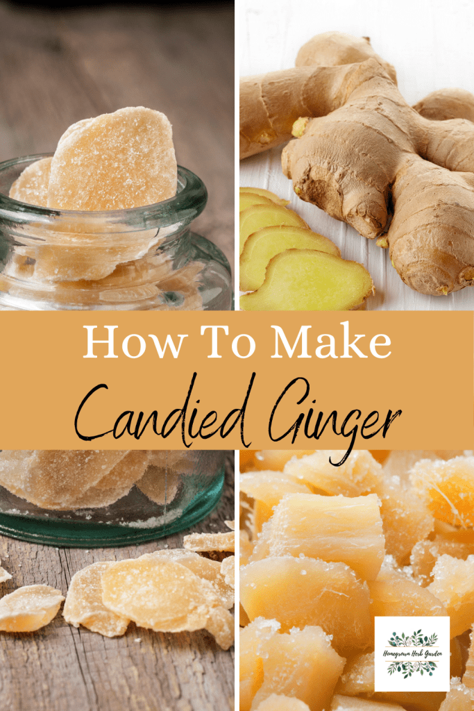 crystallized or candied ginger recipes