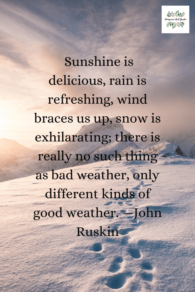 Sunshine is delicious, rain is refreshing, wind braces us up, snow is exhilarating; there is really no such thing as bad weather, only different kinds of good weather. —John Ruskin