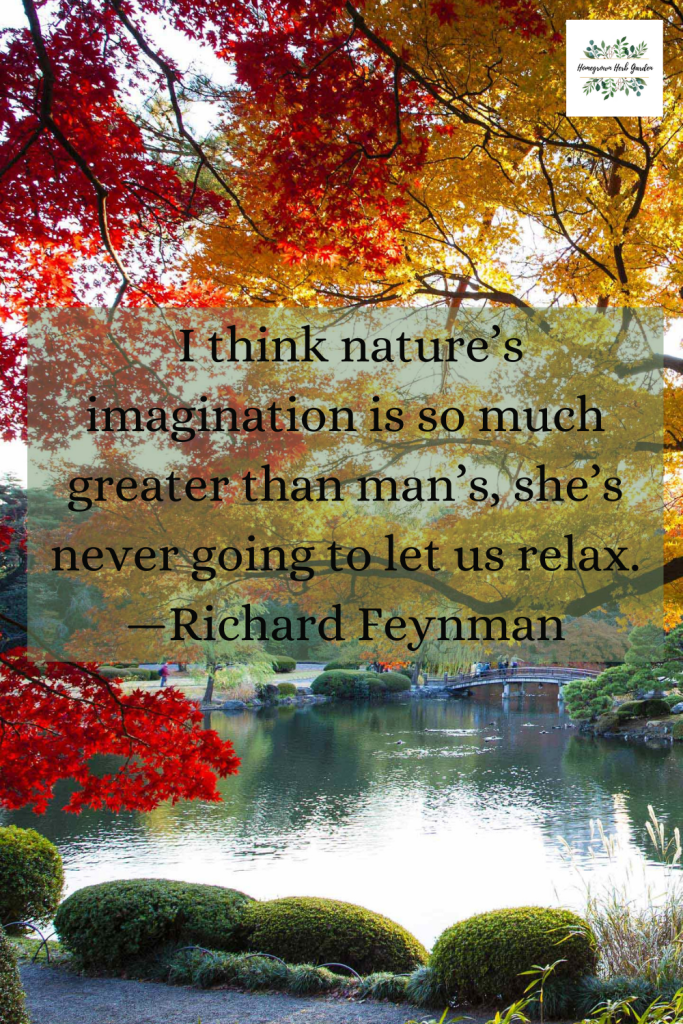 I think nature's imagination is so much greater than man's, she's never going to let us relax. —Richard Feynman