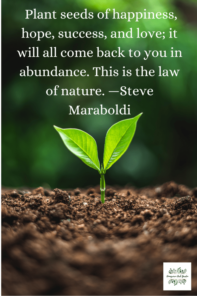 Plant seeds of happiness, hope, success, and love; it will all come back to you in abundance. This is the law of nature. —Steve Maraboldi
