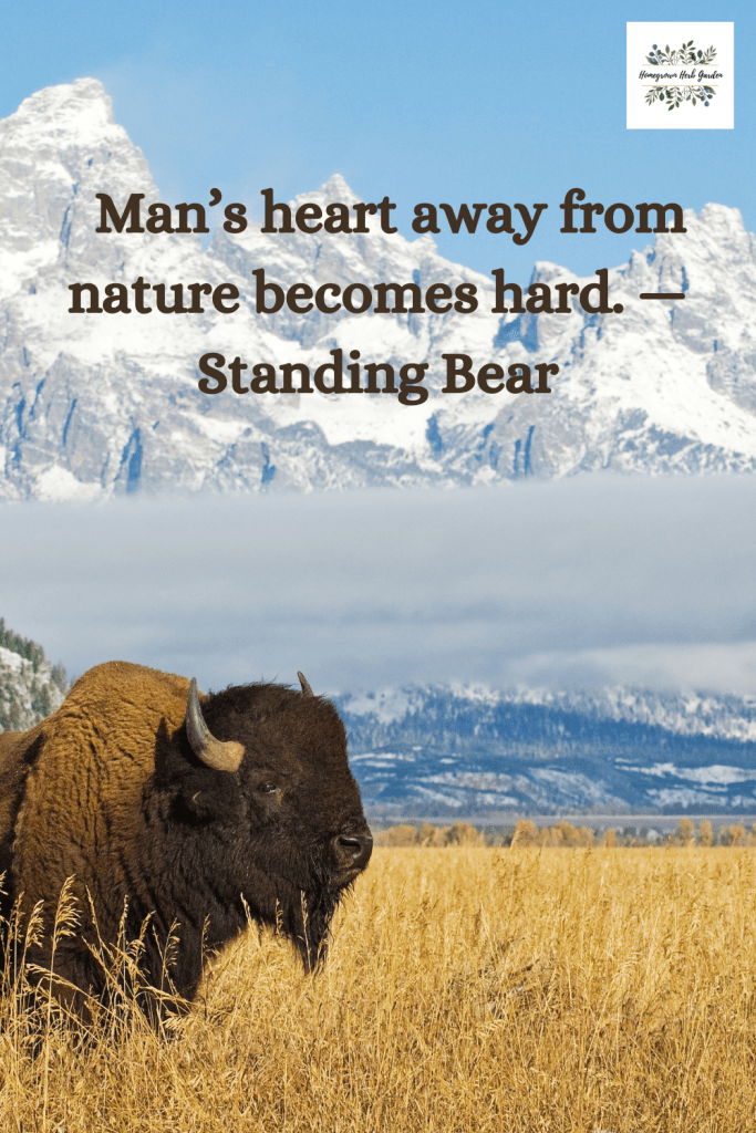 Man's heart away from nature becomes hard. —Standing Bear