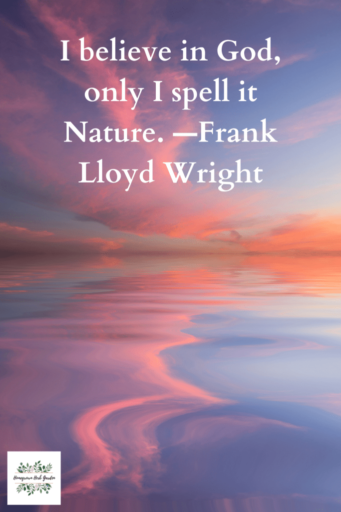 I believe in God, only I spell it Nature. —Frank Lloyd Wright