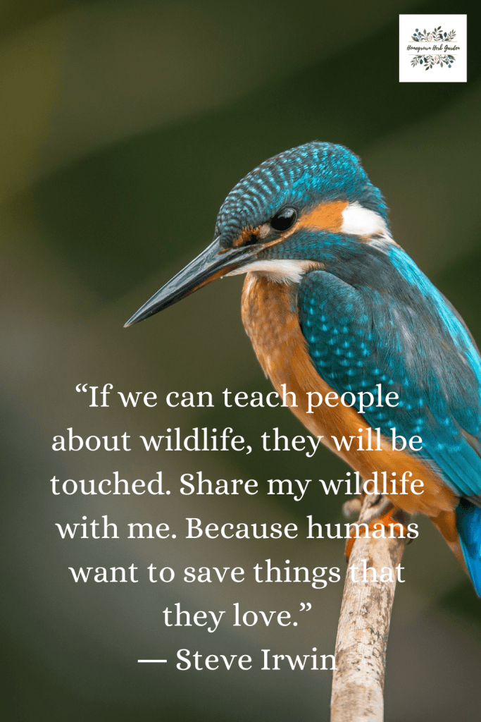 """If we can teach people about wildlife, they will be touched. Share my wildlife with me. Because humans want to save things that they love."" ― Steve Irwin"