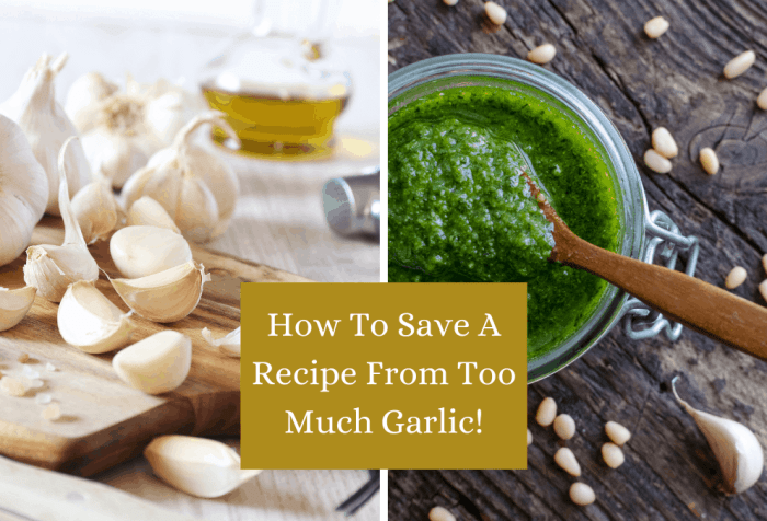 too much garlic is possible