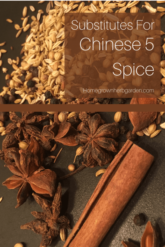 substitutes for chinese five spice
