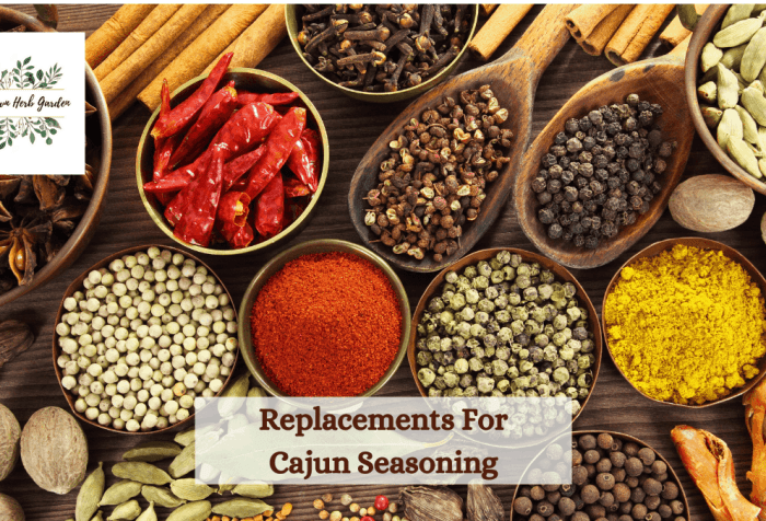 alternatives, replacements and substitutes for Cajun seasoning