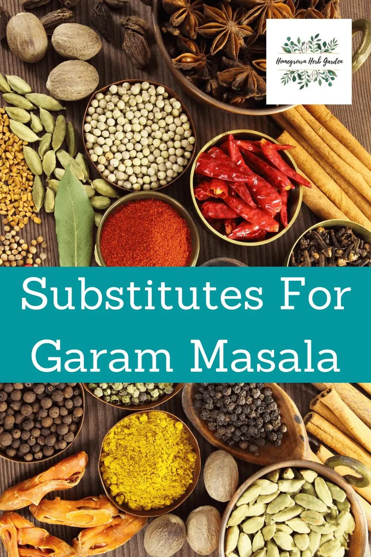 substitutes For Garam Masala
