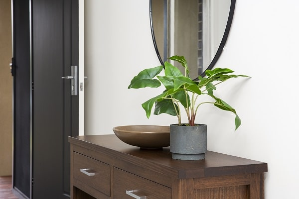 Low Maintenance Indoor Plants To Consider