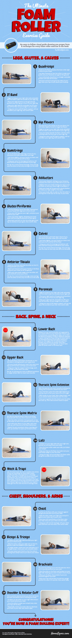 Foam Rolling Exercise Guide to teach you everything you need to know to complement your fitness & exercise routine, improve mobility and reduce back pain and knee pain - just to name a few