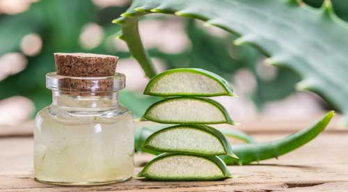Herbal Skincare Course