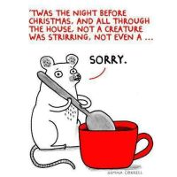 On The Fourth Day Of #Blogmas - Christmas Funnies