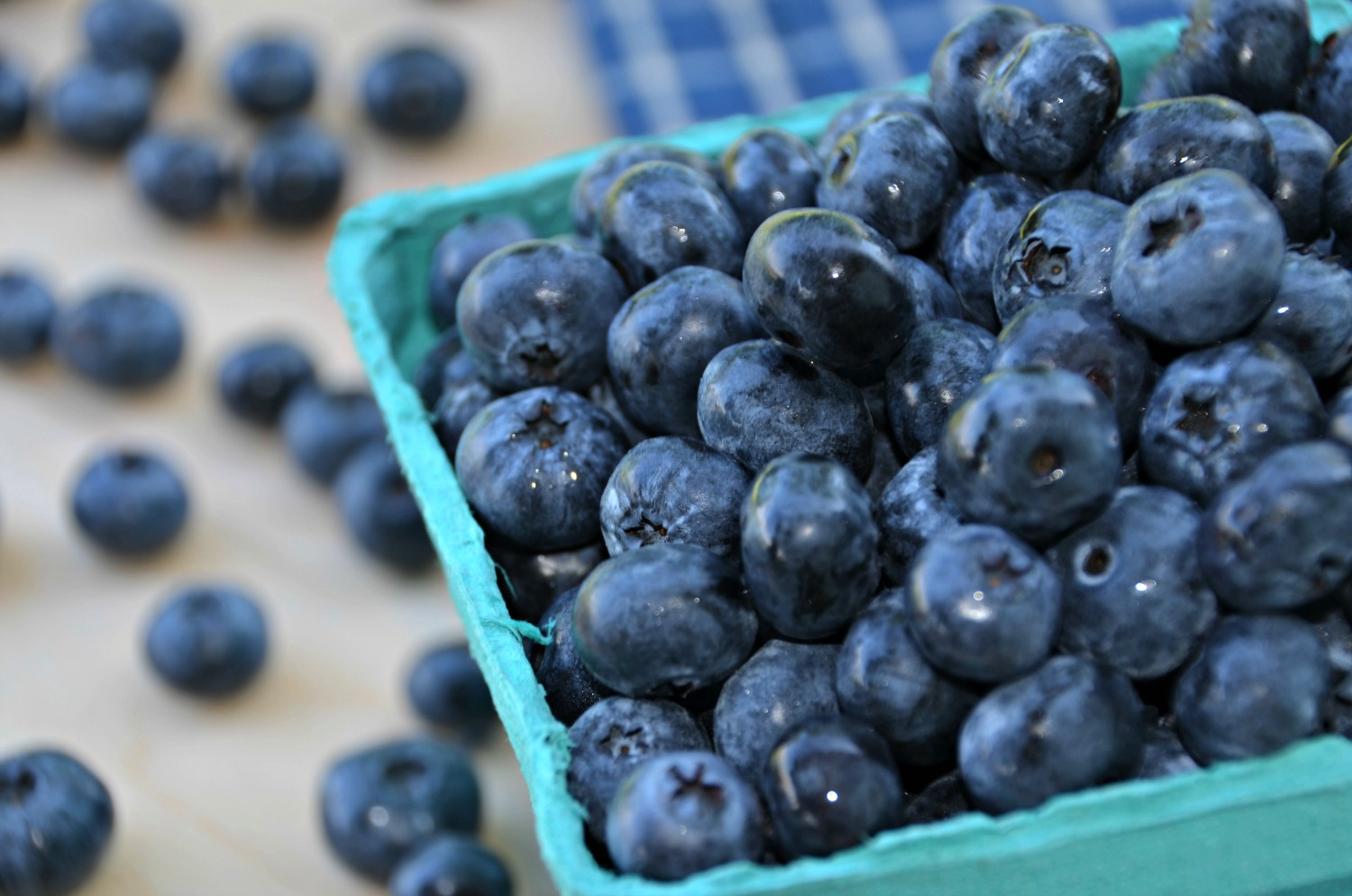 Locally Grown Blueberries-Home In The Finger Lakes